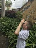 A la recherche des oiseaux